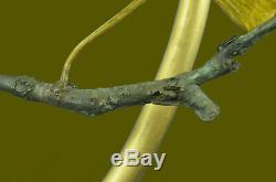 Joli Signé Oiseau Véritable Pure Bronze Sur Marbre Figurine Sculpture Statue